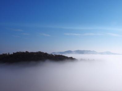 Landscape_05